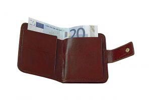 Půjčka před výplatou bez registru