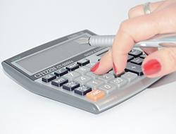 Provident kalkulačka